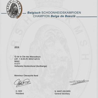 FCI Champion of Belgium
