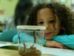 Adella Butterfly3.JPG
