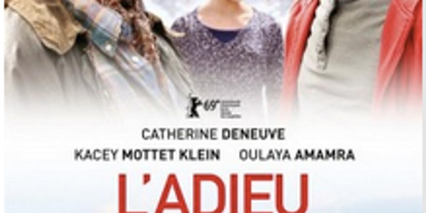 Zoom French movie ( English subtitles)