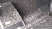 Nettoyage d'une voiture avec des poils de chien