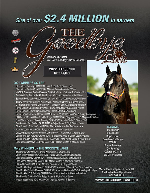 The Goodbye Lane 2022 Flyer.jpg