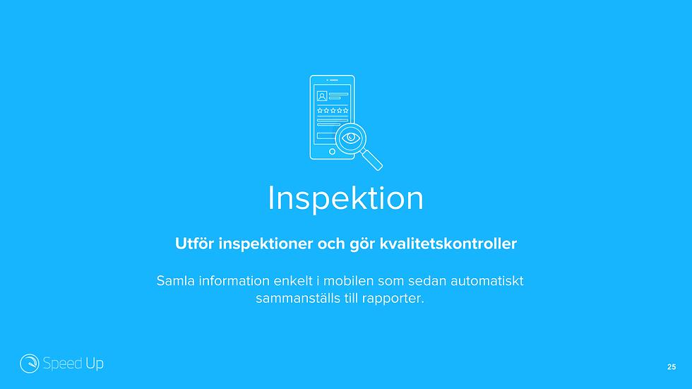 Inspektion.png