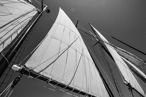 Sails_K_Ng.jpg