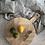 Thumbnail: Nalbari Pizza Board
