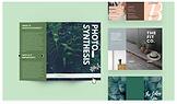brochures2.webp
