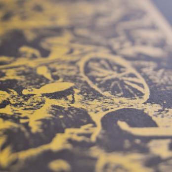 TREASPASSER LP COVER
