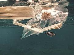 Plastic bag floating underwater