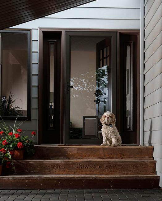 elegant-selection-pet-door.jpg