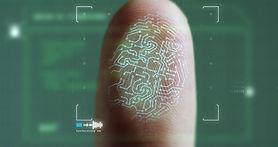 scan fingerprint biometric identity and