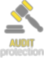 Audit Protection
