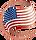 US Flag@2x.png