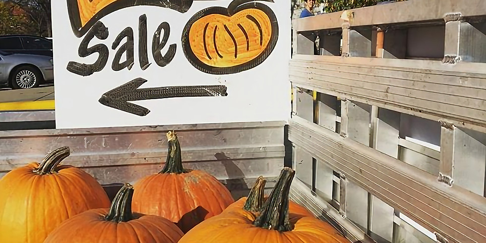 Hi-C Pumpkin Sale 2020