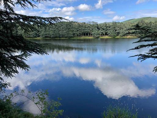 La sophro au lac du Ternay
