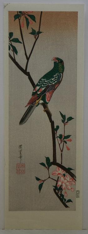 Utagawa (Ando) Hiroshige (1797-1858) 'Aronia and Parrot'