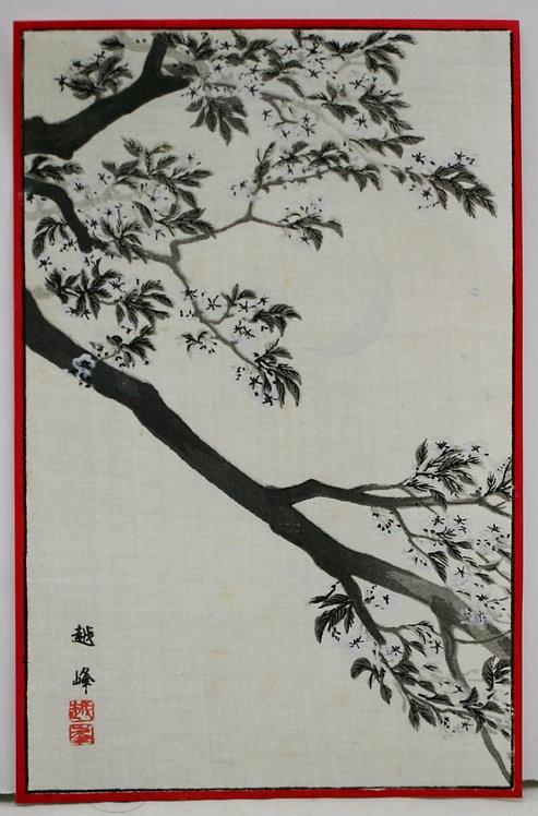 Kiyomine Yoshikawa (Etsuho) 'Crescent Moon & Cherry Blossoms'