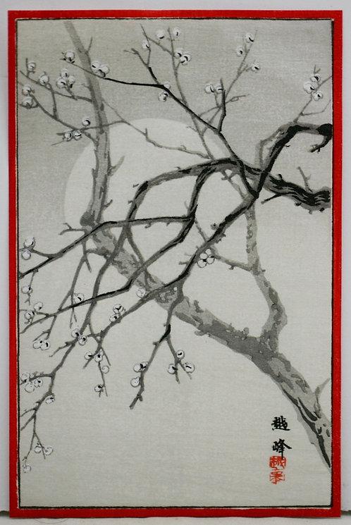 Kiyomine Yoshikawa (Etsuho) 'Cherry Blossom Moon'