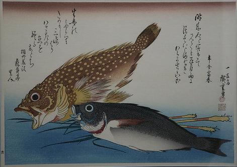 Utagawa (Ando) Hiroshige (1797-1858) 'Scorpionfish, Snapper and Ginger Root'