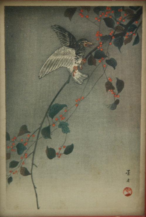 $OLD! Unread Artist 'Bird in a Nandina Tree'
