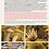 Thumbnail: Funghi in Italia - La Guida - Copertina Rigida e Portachiavi esclusivi