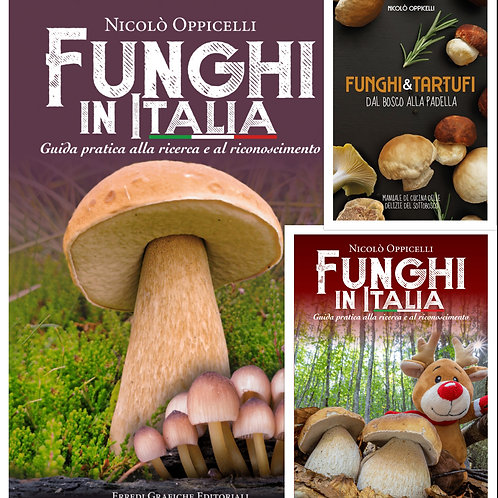 NATALE! Funghi in Italia + Manuale di Cucina