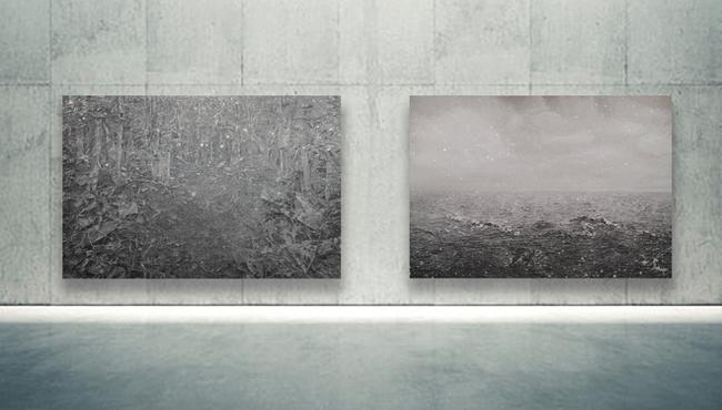 Gallery Display II