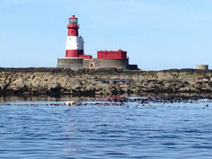 farnes light2.jpg