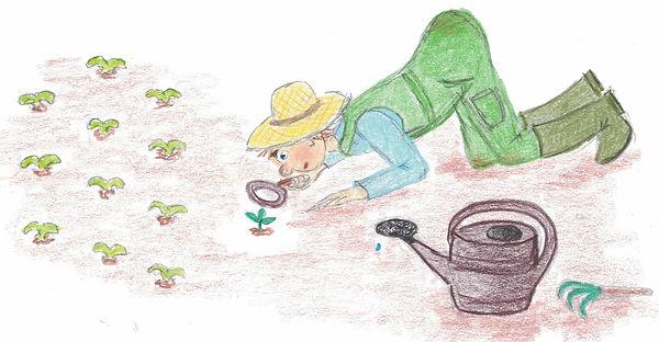 Gärtner.jpg