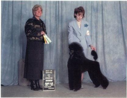 Justine puppy show.jpg