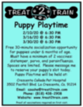 Puppy Playtime-CC February-March.jpg