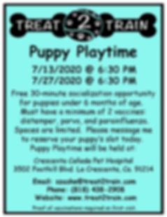 Puppy Playtime-CC July.jpg