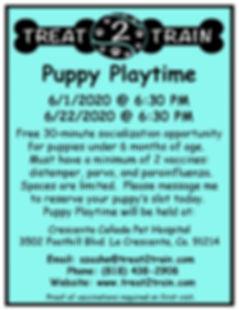 Puppy Playtime-CC June.jpg