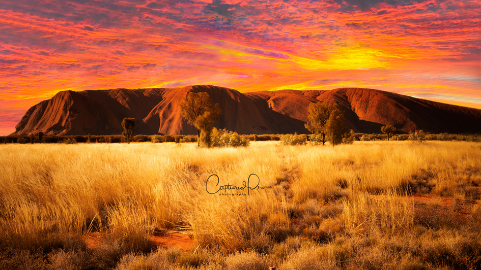 The stunning Ayers Rock
