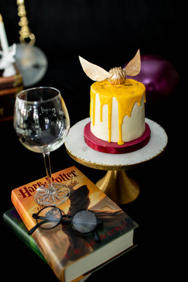 Rixeyville Virginia Harry Potter Adult Cake Smash Photographer