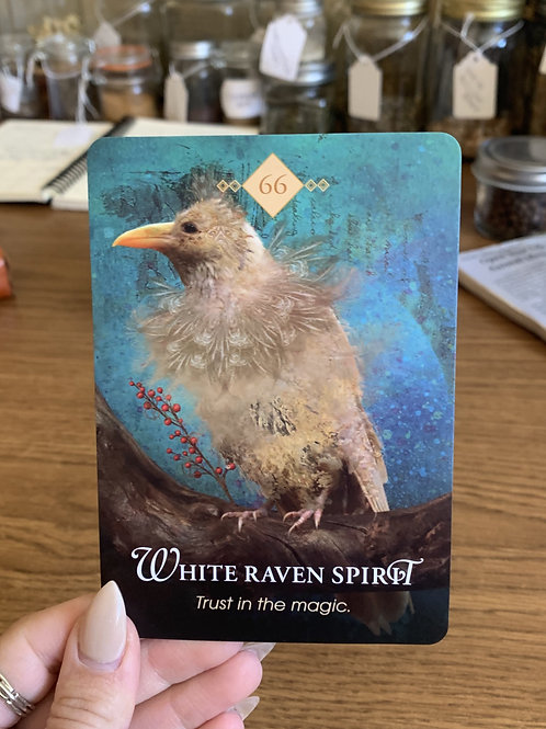 Animal Spirit Oracle Card