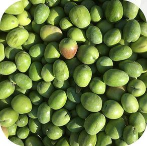 green olives zoomed in.jpg
