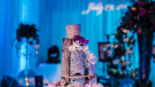 WEDDING SHOW JAN 2017-18.jpg