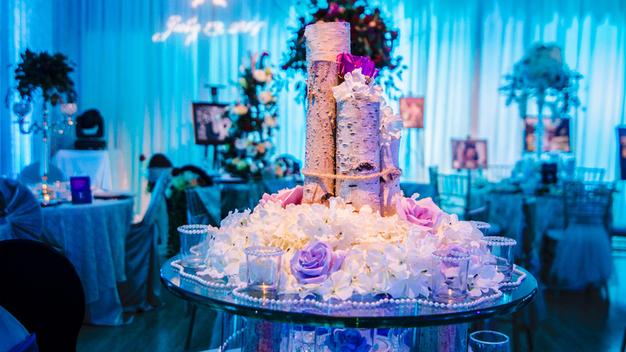 WEDDING SHOW JAN 2017-11.jpg