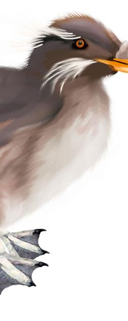 Critter 5.jpg