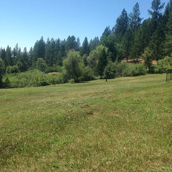 Nothing more satisfying than mowing a field and then sitting back and enjoying the view