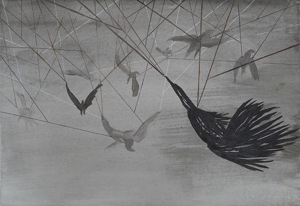 17.09 Raven 17.jpg