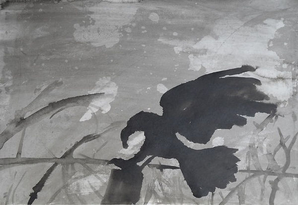 17.09 Raven 06.jpg