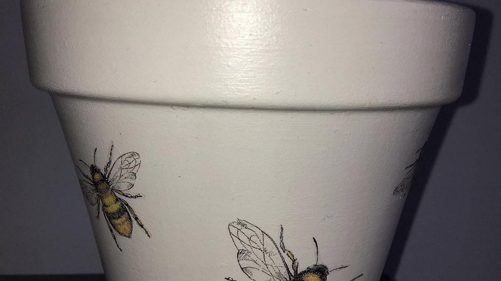 Busy bee 🐝 plant pot