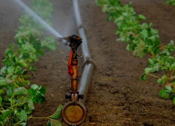 Análisis de Agua Completo