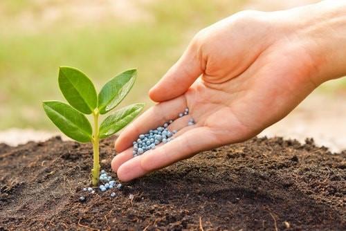 reducción del coste de los cultivos