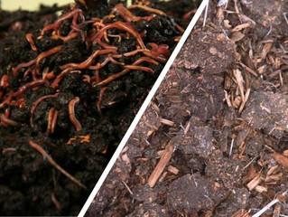 Compost y vermicompost ¿En qué se diferencian?