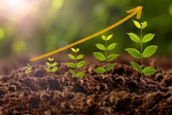 importancia del calcio en la agricultura