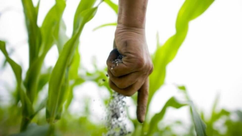 la fertilización nitrogenada