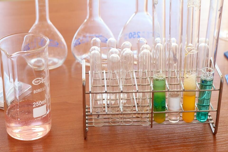 pigmento de clorofila