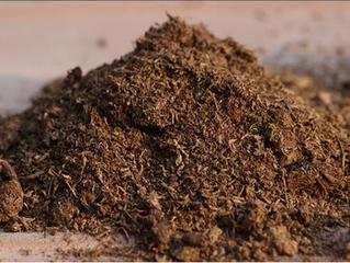 Materia orgánica en suelos. Beneficios económicos y lucha contra el cambio climático.