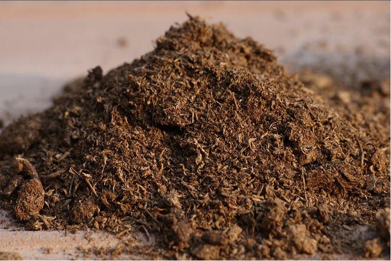 muestra de suelo